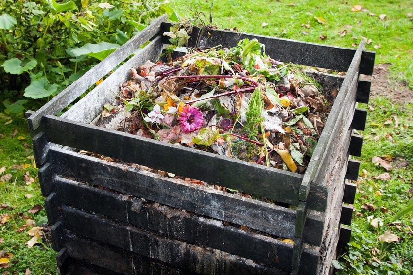 clear-up-garden-proj
